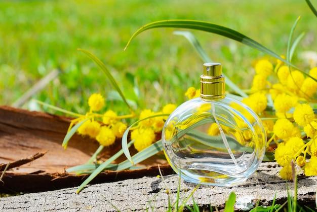Flakon damskich perfum stoi na korze drzewa obok kwiatów mimozy