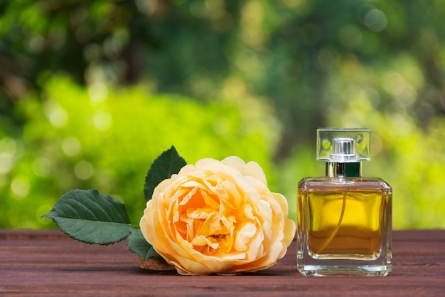Flakon perfum i pachnąca żółta róża.