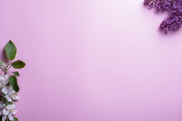 Flatlay gałęzi białych kwiatostanów wiśni i bzu na różowym tle widok z góry.