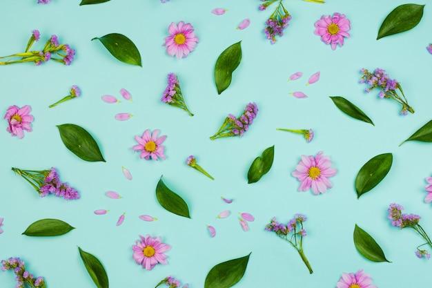 Flatlay tle kwiatów z stokrotki, kwiaty, płatki i liście, niebieskie tło.