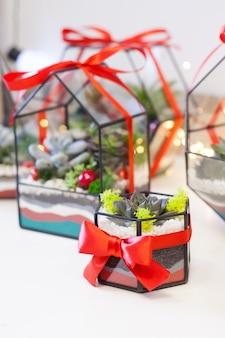 Florarium, kompozycja sukulentów, kamienia, piasku i szkła, element wnętrza, wystrój domu, święta,