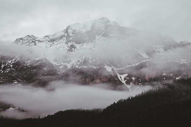 Foggy mountain
