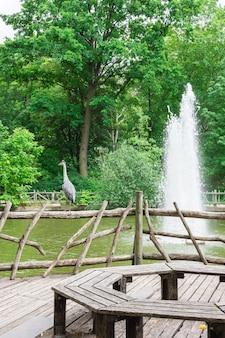 Fontanna w parku volkspark friedrichshain w berlinie, czapla stoi na drewnianej poręczy