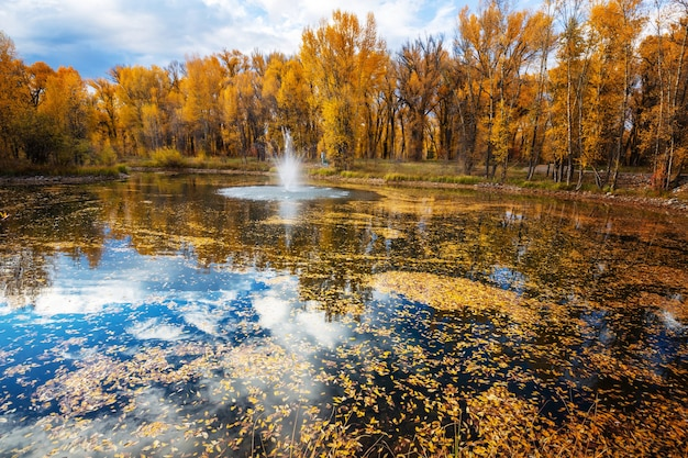 Fontanna w pięknym jesiennym parku