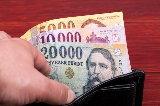 Forint węgierski w czarnym portfelu
