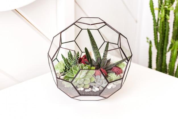 Forma szklana do roślin z piaskiem i kamieniami