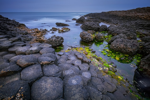 Formacja skał bazaltowych giant's causeway, port ganny bay i great stookan, county antrim, irlandia północna, wielka brytania