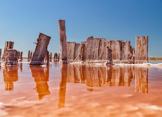 Formowanie soli w kształcie grzyba w jeziorze. woda tego jeziora jest mocno nasycona solą i ma jasny różowy kolor