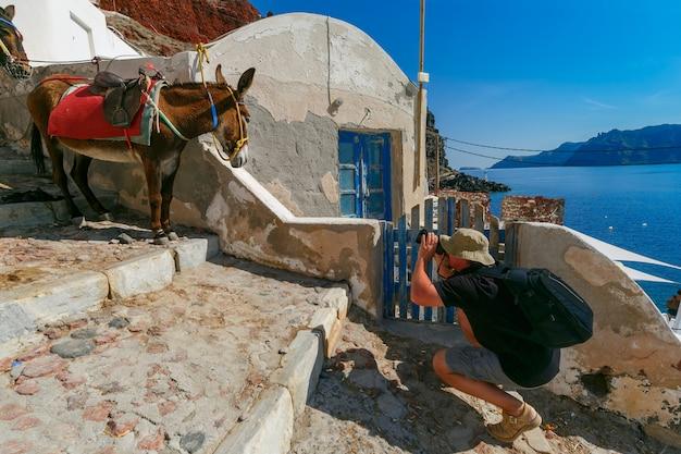 Fotograf bierze zdjęcia osła, oia, santorini