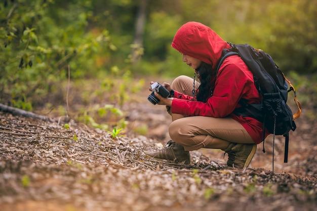 Fotograf z plecakiem robiący zdjęcia w pięknym lesie na szlaku turystycznym