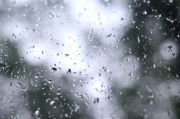 Fotografia deszcz opuszcza na nadokiennym szkle z zamazanym widokiem kwitnący zieleni drzewa