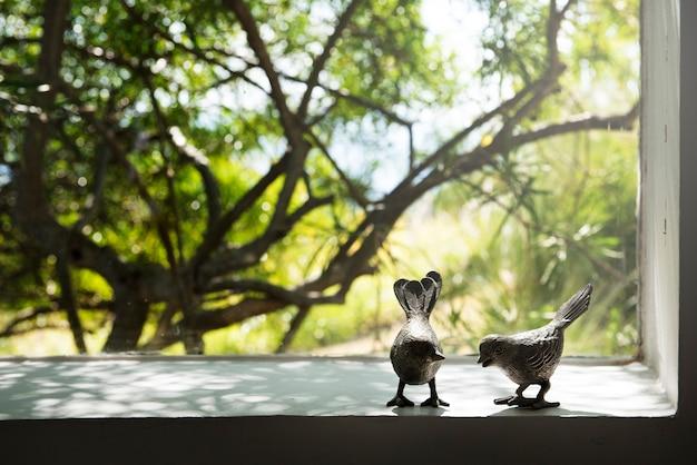 Fotografia ptak para przez okno natura