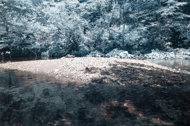 Fotografia w podczerwieni omszałych skał wykonana w chorwackiej miejscowości skrad