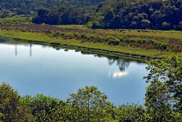 Fragment rzeki błękitnych wód, graniczącej z drzewami i trawą. pirapora do bom jesus, sao paulo, brazylia