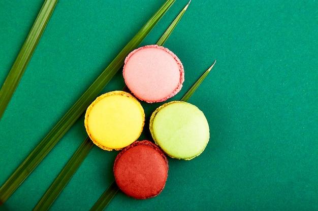 Francuski przysmak, kolorowe makaroniki z wiosennym kwiatem.