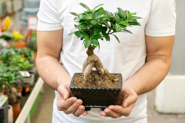 Frontowego widoku mężczyzna trzyma pięknej domowej rośliny