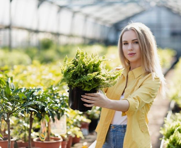 Frontowego widoku żeńska patrzeje garnek roślina