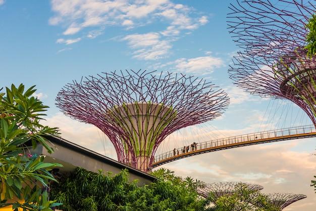 Futurystyczny widok niesamowitej iluminacji w garden by the bay