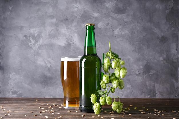 Gałąź chmielu i piwo na szarej przestrzeni