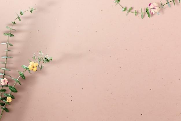 Gałąź kwiatu eukaliptusa z cieniem na beżowym betonie