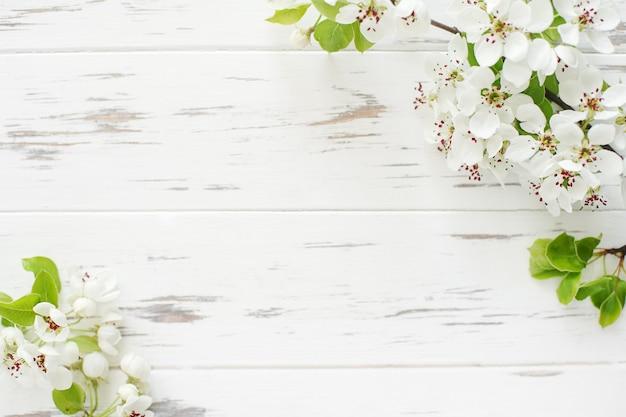 Gałąź świeżej kwitnącej sakury na białym tle drewnianych z miejsca na kopię