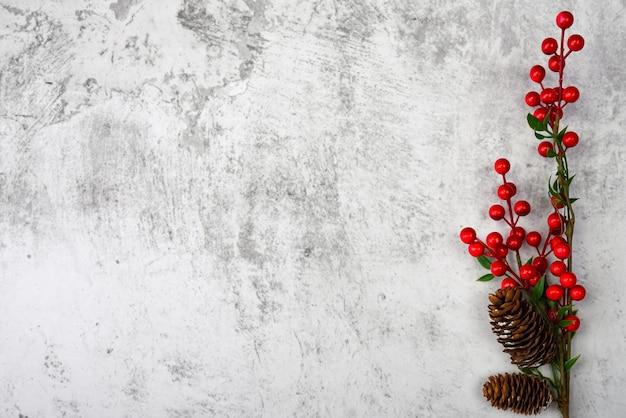Gałąź z jagodami i szyszkami na teksturowanej otynkowanej ścianie