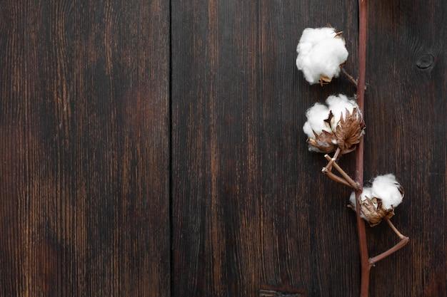 Gałązka bawełny na ciemnym tle drewnianym (zbliżenie)