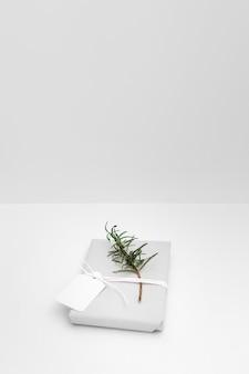 Gałązka i pusta etykietka wiązał z zawijającym prezenta pudełkiem przeciw białemu tłu