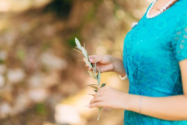 Gałązka oliwna w kobiecych rękach ręce ślubu panny młodej w mon