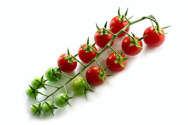 Gałązka pomidorków cherry na białej powierzchni