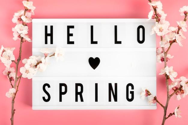 Gałązki drzewa morelowego z kwiatami i lightbox z cytatem hello spring na różowym tle.