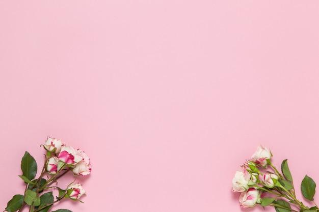 Gałązki małe róże białe i czerwone na różowym tle
