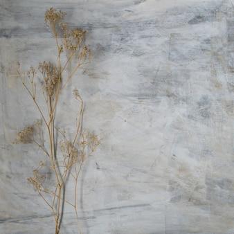 Gałązki małych białych suchych wiosennych kwiatów na stałym szarym tle tekstury w stylu vintage.