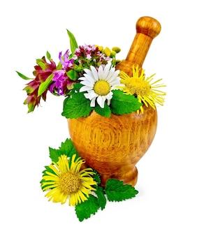 Gałązki mięty, melisy, kwiatów oregano, wrotyczu pospolitego, rumianku, omanu, bergamotki w drewnianym moździerzu na stole na białym tle