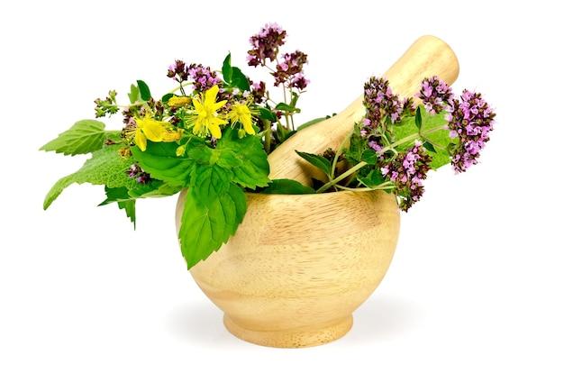 Gałązki mięty, melisy, oregano, tutsanu, liści szałwii w drewnianym moździerzu na białym tle