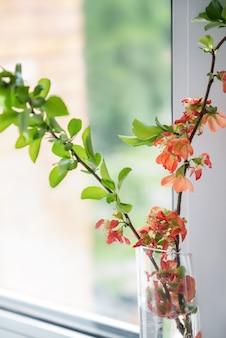 Gałązki z zielonymi liśćmi i czerwonymi kwiatami na wazonie na parapecie