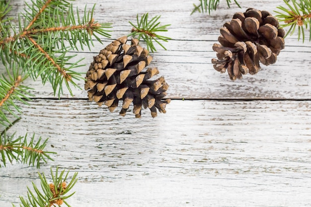 Gałęzie jodły świąteczne z szyszek