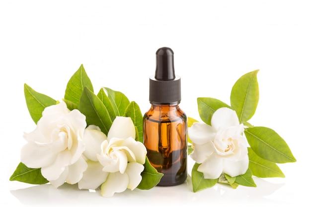 Gardenia istotny olej odizolowywający na białym tle