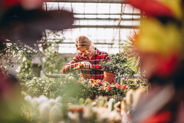 Gardner kobieta szuka po roślinach w szklarni