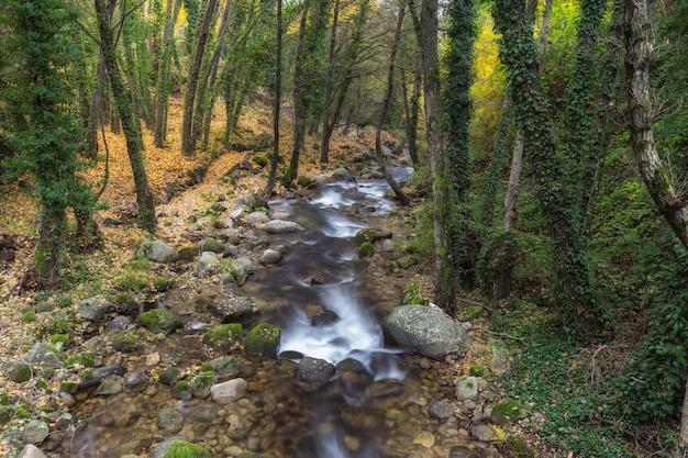 Garganta san gregorio. krajobraz w pobliżu aldeanueva de la vera