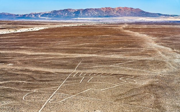 Geoglif hands w nazca w peru