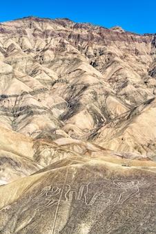 Geoglif małp w palpa. światowe dziedzictwo unesco w peru
