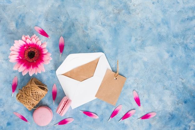 Gerbera kwiat z kopertą i macaroons
