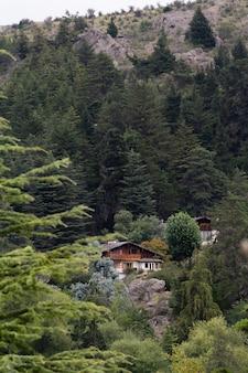Gęsty las sosnowy w górach i widoczny wśród nich drewniany dom