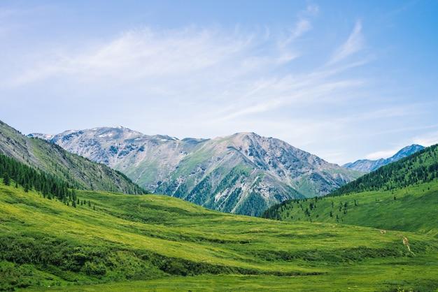 Gigantyczne góry z śniegiem nad zielona dolina z łąką i lasem w słonecznym dniu