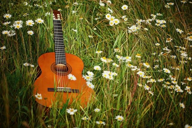 Gitara akustyczna leży na zielonej trawie z rumianku