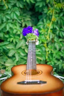 Gitara Z Niebieskim Kwiatem Na Tle Zielonych Roślin, Selektywny Fokus. Premium Zdjęcia
