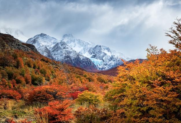 Glaciar piedras blancas w lesie jesienią w kolorze czerwonym. park narodowy los glaciares. el chalten. patagonia. argentyna