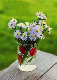 Gładkie kwiaty aster