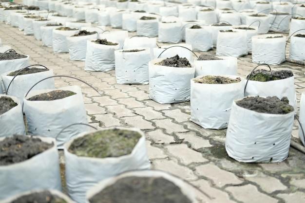 Gleba i nawóz w worku do sadzenia do uprawy sadzonek roślin do przesadzania w gospodarstwie